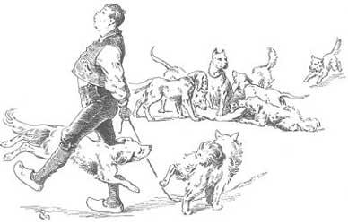 Иллюстрация к сказке Гримм Разумный Ганс