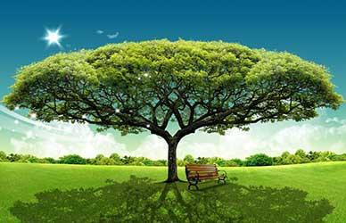 Иллюстрация к сказке братьев Гримм Сказка о заколдованном дереве